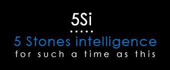 5 Stone Intelligence